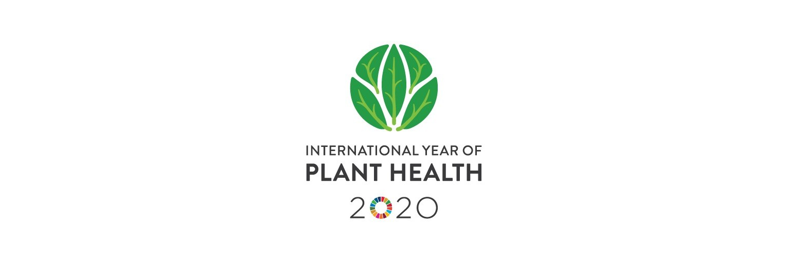 Video International Year of Plant Health