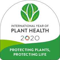 International Year of Plant Health Web Button